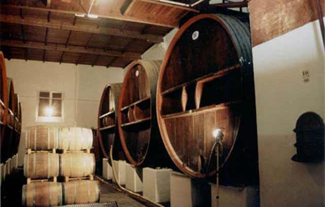 2by4-Wijnhuis-'St-Esteve'-interior